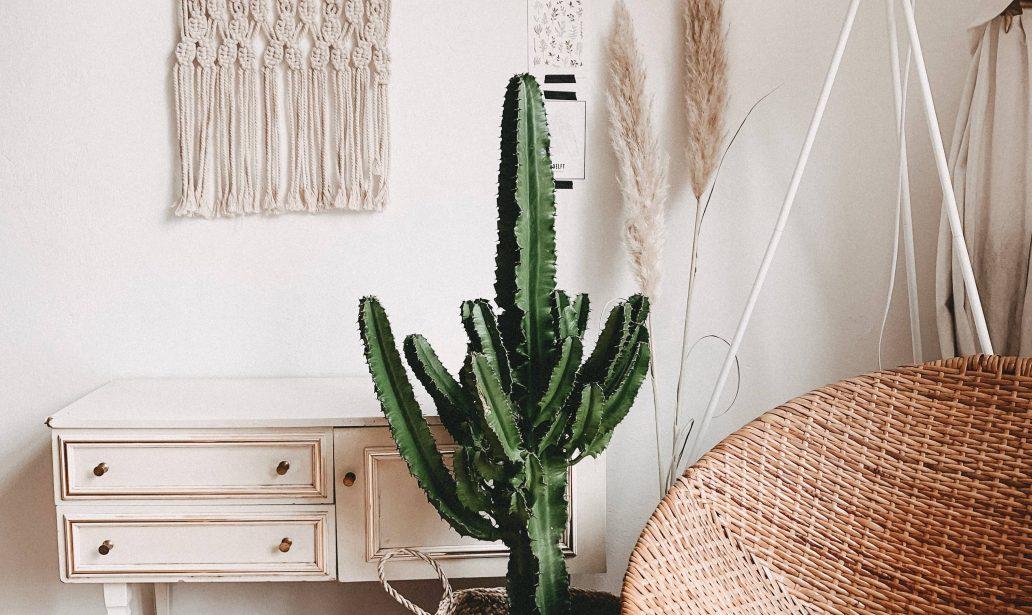 Accessoires bohème découvrez comment décorer votre intérieur